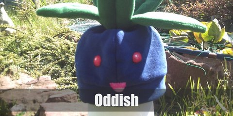 Oddish are adorable, there's no denying that. They are small, blue, round Pokemons with long green leaves as their hair. They have red eyes to two tiny feet.