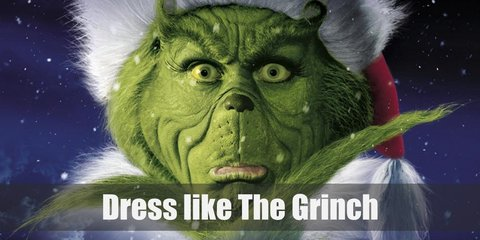 The Grinch (Jim Carrey) Costume