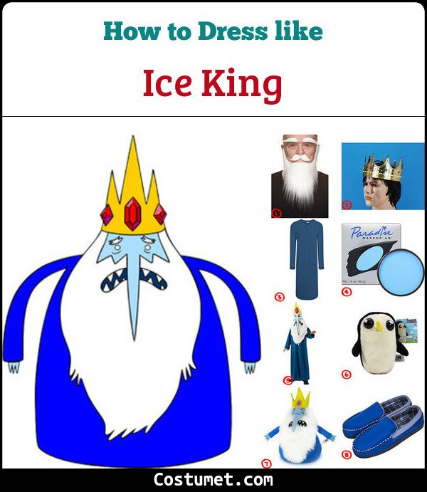 Ice King Cosplay & Costume Guide