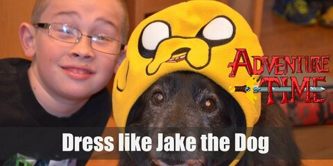 Become Jake the Dog from Adventure Time Costume