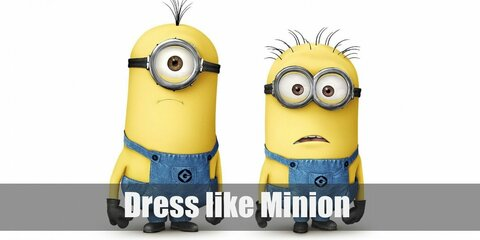 Dress Like a Minion (Despicable Me) Costume