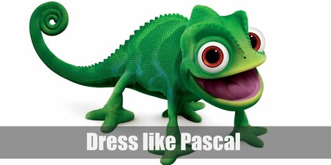 Pascal doesn't wear any clothes (except for the scene where Rapunzel sews him a dress). He's a chameleon so he can change skin colors but his original one is a bright green. He has a long curling tail and ridges all over his back. Here's everything you need to look like Pascal