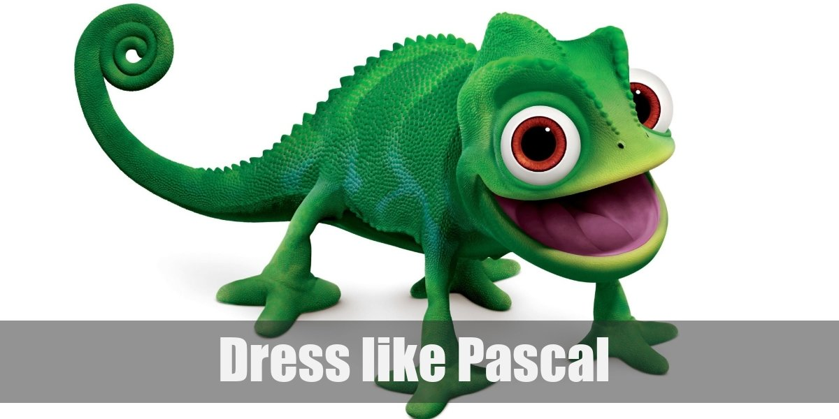 Pascal From Tangled Costume For Cosplay Halloween 2020