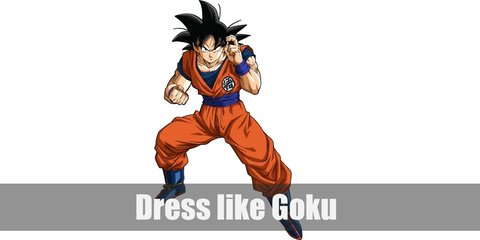 Goku (Dragon Ball) Costume