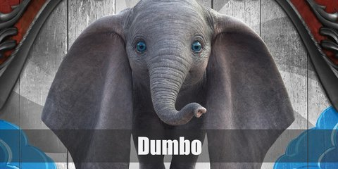 Dumbo the Elephant is an easy costume, even for your pets. You will need to wear all-grey, a floppy elephant ear headband, a fake tail, and a red circus collar.