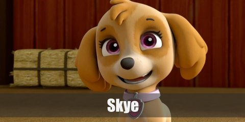 For Skye costume, bring out your inner pup with an all-pink outfit, pink goggles, and a pair of awesome wings.