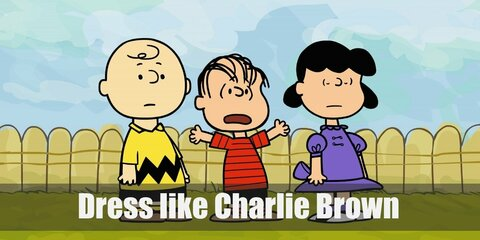 Charlie Brown (Peanuts) Costume