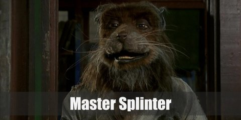 Master Splinter (Teenage Mutant Ninja Turtles) Costume