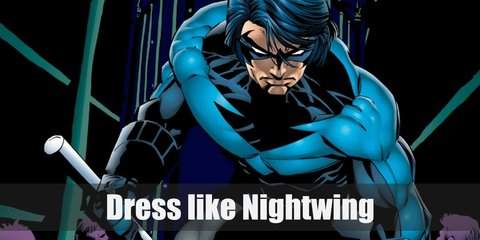 Nightwing Costume