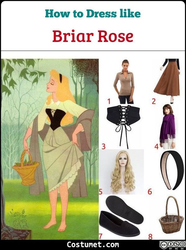 Briar Rose Costume for Cosplay & Halloween