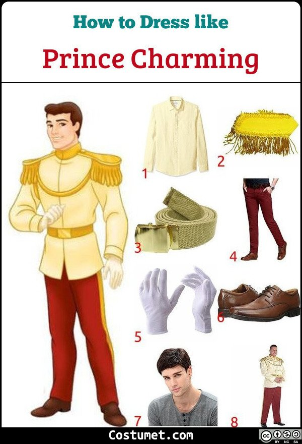 Prince Charming Costume for Cosplay & Halloween