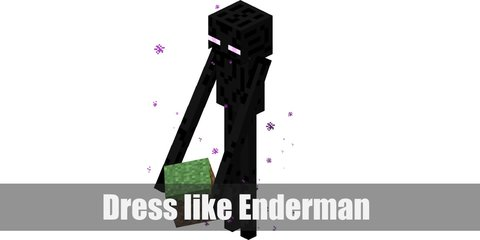 Enderman (Minecraft) Costume