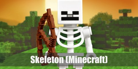 Skeleton (Minecraft) Costume