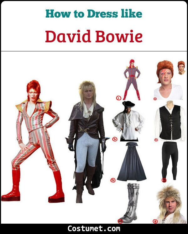 David Bowie Cosplay & Costume Guide