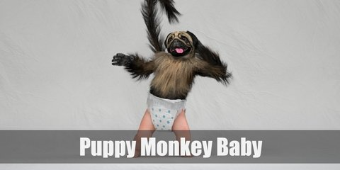 Puppy monkey baby's costume includs a bull dog mask. Then wear a brown long sleeved top with a faux fur collar and tail. Complete the costume with a diaper bottom with polka dots.