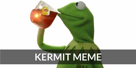 Kermit Meme's costume is a green outfit, a cup of tea, and a sign. You could wear a Kermit Meme costume, but that's none of my business.