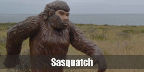 People who have seen a Sasquatch have said that it looks like a tall, muscular, ape-like creature that can easily reach up to nine feet in height. It is covered head to toe in dark fur and has extraordinarily large feet.