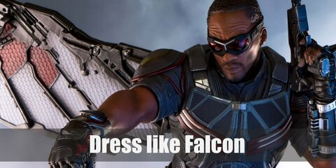 Falcon from Avengers Costume