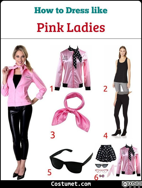 Pink Ladies Costume for Cosplay & Halloween