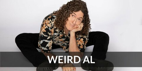Weird Al's costume is a comfy Hawaiian shirt, loose pants, a long curly wig, and an accordion as an accessory. Weird Al was the original YouTube parody singer before YouTube was born.