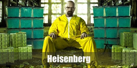 Heisenberg's signature coverall costume is composed of a yellow coverall, red respirators, and blue gloves. Complete the costume with a fake beard and white sneakers,