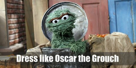 Oscar lives in his garbage can and rarely ever goes out of it. What can we say, he just really loves trash that much!