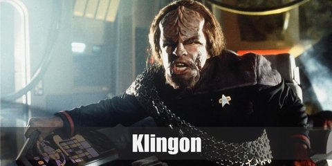 Klingons costume is mostly like humans, they have a lot more extra organs. But the most obvious difference is their forehead and wearing war armor.