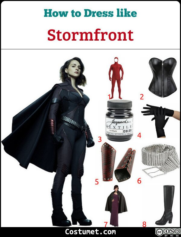 Stormfront Costume for Cosplay & Halloween